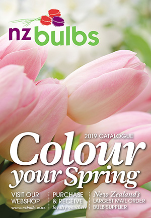Spring Bulb Categories
