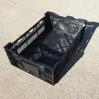 Plastic Bulb Crates - Two Sizes